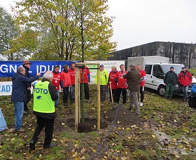 Baumpflanzaktion zur Tour d' Allée Brückentour 2015