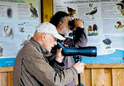 Birdwatching_2017_R_Guenther